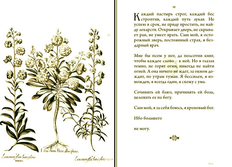 Светлана Лаврентьева /Кот Басё/ «VERBARIUM»